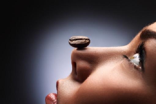 Kaffee Bohne