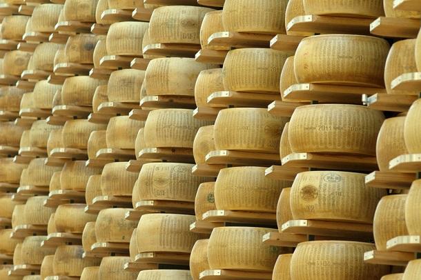 Parmesan Käse in Rollen im Lager